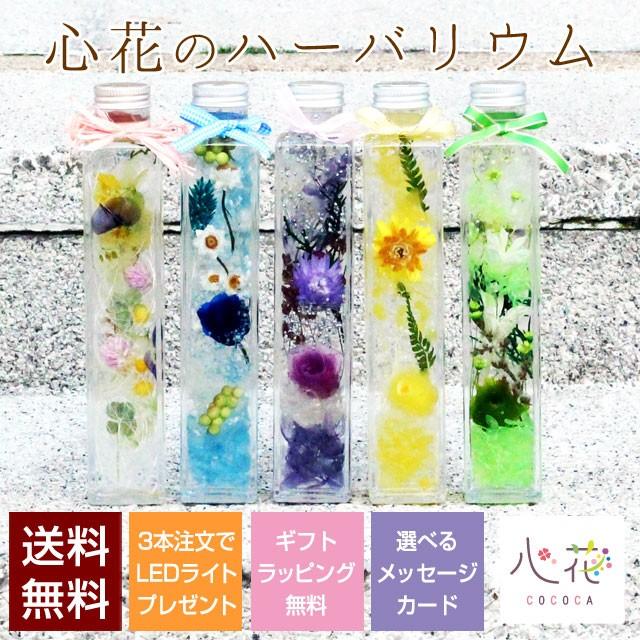 【5月23日よりご注文のお客様は6月4日以降出荷】ハーバリウム 幸せの四つ葉のクローバー 選べる15種類 メッセージカード付き
