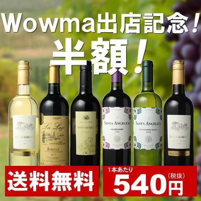 【送料無料】ワインセット 家飲み ワイン 6本 セット ボルドー入 赤ワイン 白ワイン デイリーワイン 飲み比べ 第44弾