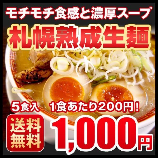 送料無料 ぽっきり 生ラーメン 北海道 札幌熟成生麺 5種食べくらべ メール便 1000円ポッキリ 味噌 しょう油 塩