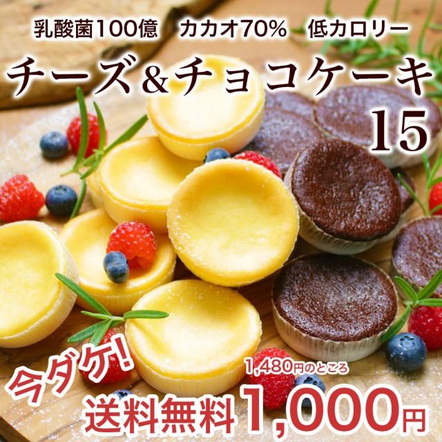 乳酸菌チーズケーキ&カカオ70ガトーショコラ15入 チョコスイーツ 訳ありでない
