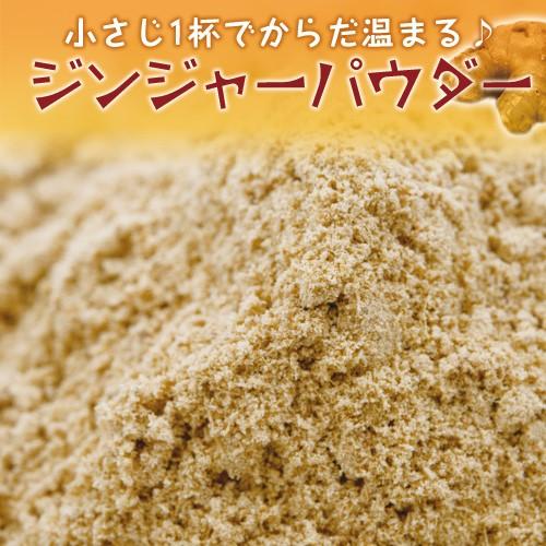 ジンジャーパウダー 3kg,ラク痩せ,Ginger Powder,粉末,ジンジャラー,生姜,調味料,業務用,乾燥しょうが,ジンゲロール,【送料無料】