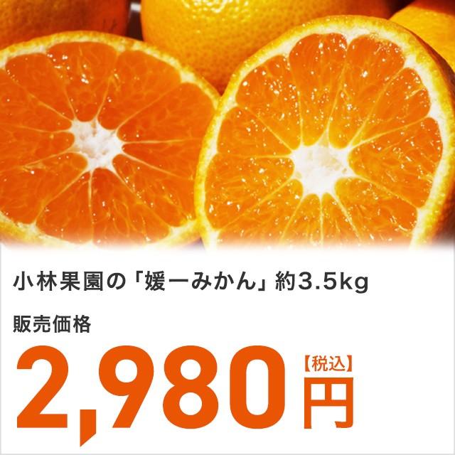 愛媛県八幡浜の太陽が育んだ豊潤でまろやかな甘味の「御蜜柑」《小林果園の「媛一みかん」約3.5kg》