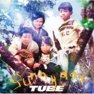 【CD】 TUBE チューブ / sunny day