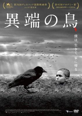 【DVD】 異端の鳥 送料無料