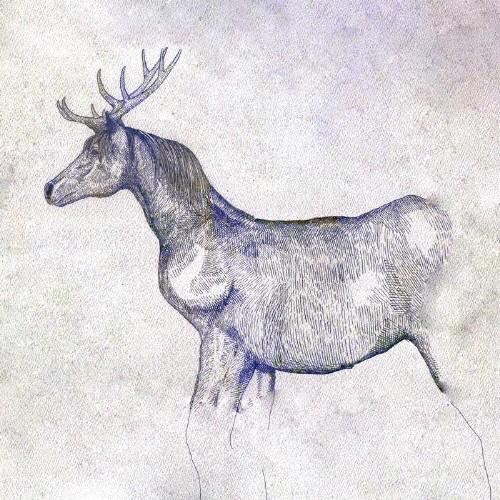 [枚数限定][限定盤][初回仕様]馬と鹿(初回限定/映...