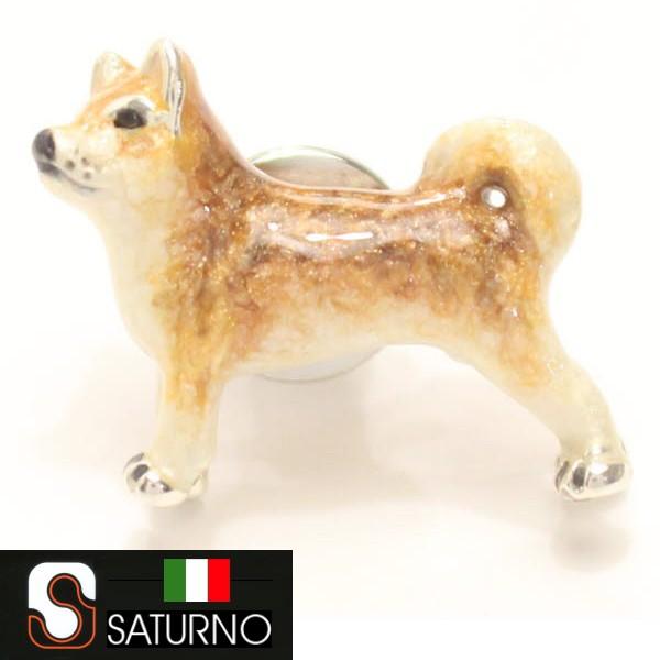 柴犬のタイタック【SATURNO・サツルノ】