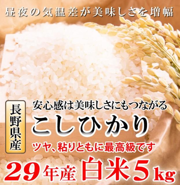 こしひかり 白米5キロ 平成29年産 長野県産 ...