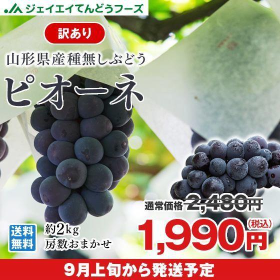 【訳あり】 大粒ぶどう 種なし 『ピオーネ』 約2kg 山形県産 ご自宅用 葡萄 h05