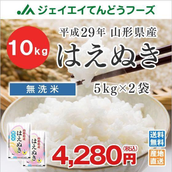 米 お米 山形県産 はえぬき 無洗米 10kg (5kg×2袋) 平成29年産 ※注文から5営業日前後で発送