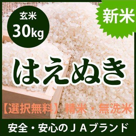 【送料無料】 山形県産 はえぬき 玄米 30kg 平成2...