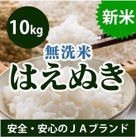 【送料無料】 山形県産 はえぬき 無洗米 10kg(5k...