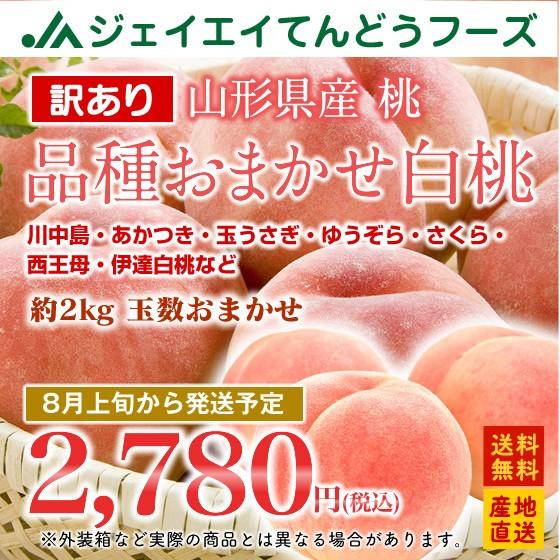 【訳あり】 品種おまかせ 白桃 山形県産 約2kg (玉数おまかせ) もも 桃  8月上旬〜出荷予定 f15