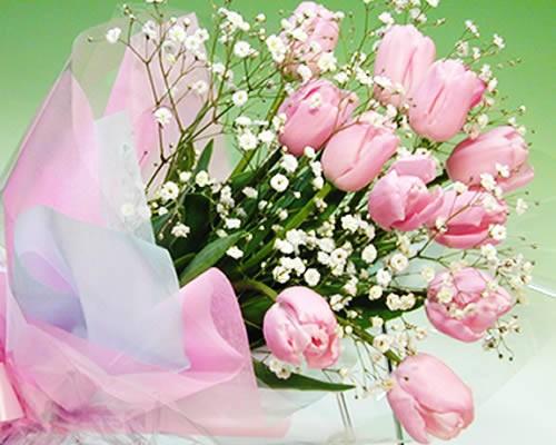 【スプリングギフト】ピンクのチューリップとカス...