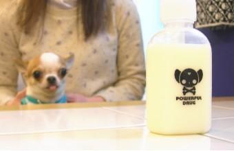 スキップボトル100ml (チワワ 小型犬 散歩 水飲...