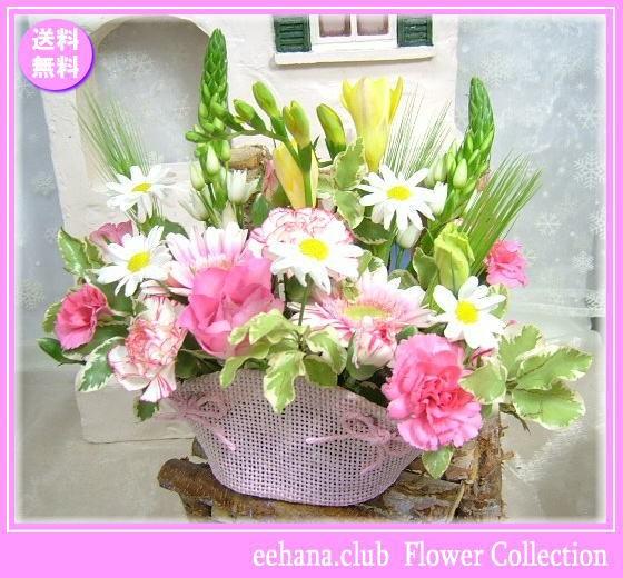 3月誕生花★ピンクバスケットアレンジ3,600円【送...