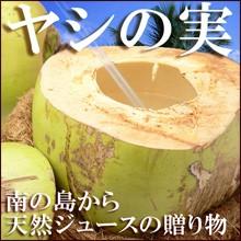 【送料無料】生ヤシの実(5玉)天然ヤシの実ジュ...