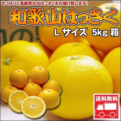 和歌山八朔(はっさく)Lサイズ【秀品】5kg 送料...