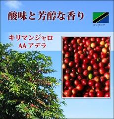 グルメコーヒー豆【キリマンジャロ】珈琲豆80g...