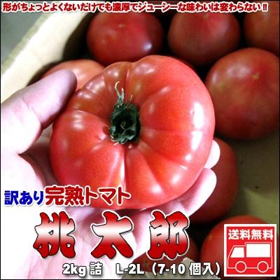 トマト 訳あり 北海道とまと 桃太郎2kg 送料無料...