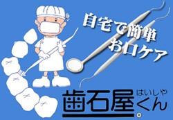 送料無料【歯石屋くん】ステイン 除去、歯 掃除具...