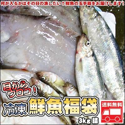 鮮魚を急速冷凍!北海道お魚福袋3kg 送料無料 ※...