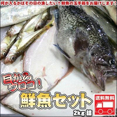 鮮魚セット 2kg 業務用 居酒屋 送料無料 北海道産...