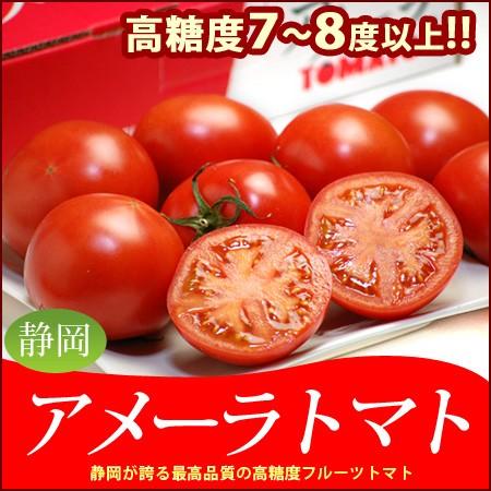 【送料無料】アメーラトマト(約900g)野菜ソムリ...