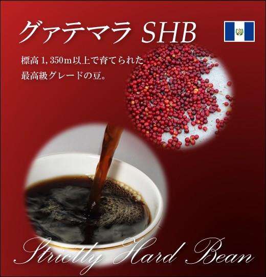【コーヒー 健康】グァテマラ SHB 【生豆】 2...