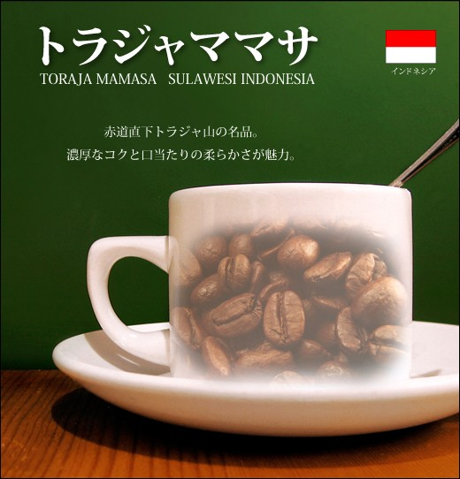 【コーヒー 健康】トラジャママサ 【生豆】 2...