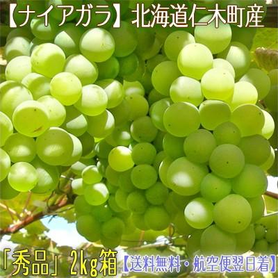 【北海道 ぶどう】北海道仁木産 ナイアガラ 2kg 8...