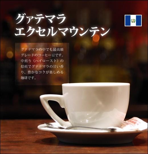 【コーヒー 健康】グァテマラ エクセルマウンテ...