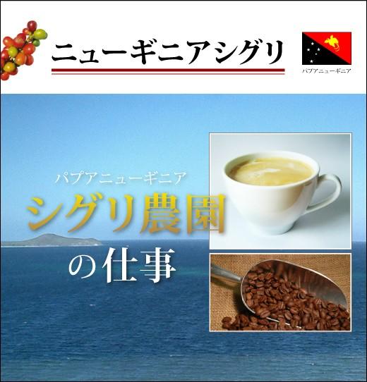 【コーヒー 健康】ニューギニア シグリ 【生豆...