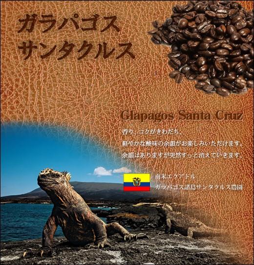 ガラパゴス サンタクルス 【煎り豆】 200g