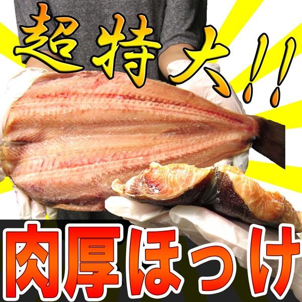【超特大】肉厚ほっけ!!脂のり抜群♪頭なし480〜6...