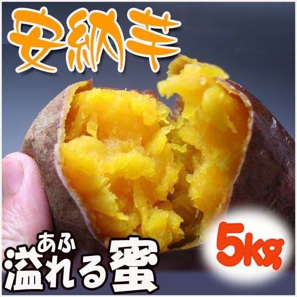 [訳あり] 安納芋 5kg [送料無料] 甘〜〜い!!さつ...