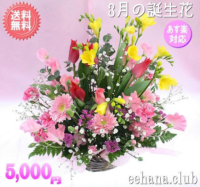 ポイント5倍!3月誕生花★スマイルアレンジ5,000...