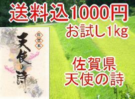 送料込み1000円お米マイスター・お米ア