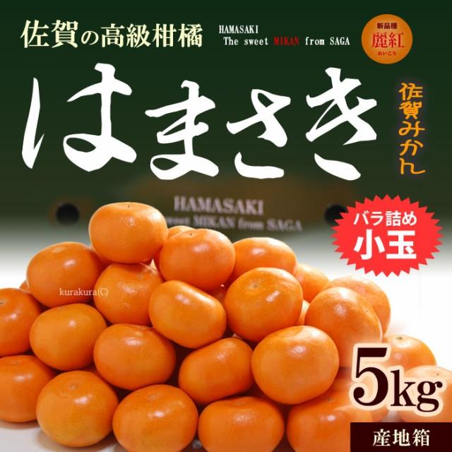 はまさきみかん(小玉/約5kg)佐賀産 糖度12.5度以...