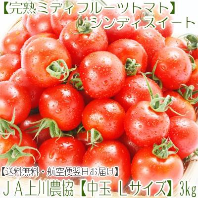 【送料無料・最高級完熟フルーツトマト】北海道JA...