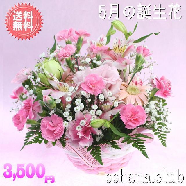 只今ポイント5倍!人気!5月の誕生花★ピンクアレ...