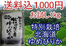 送料込1000円お米マイスター・お米アド