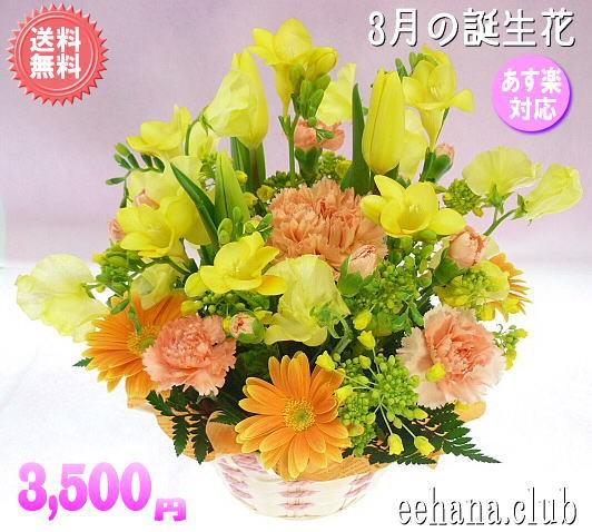 3月誕生花★オレンジアレンジ3,500円【送料無料】...