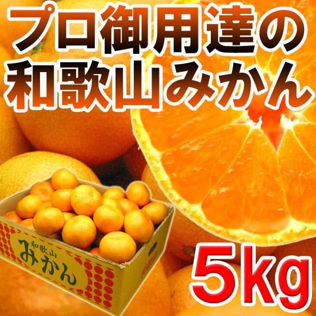 【送料無料】プロ御用達☆訳あり和歌山みかん5kg...