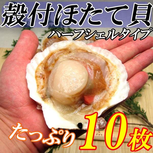 殻付ほたて貝 10枚入り 調理しやすい片貝でバタ...