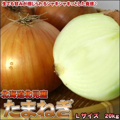 玉ねぎ 送料無料 北海道 たまねぎ 20kg L 玉葱 タ...