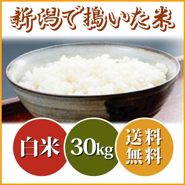 【送料無料】新潟で搗いた米 30kg(白米)♪<10k...
