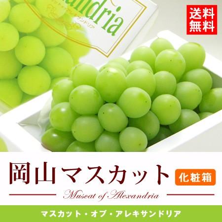 【送料無料】岡山マスカット・オブ・アレキサンド...