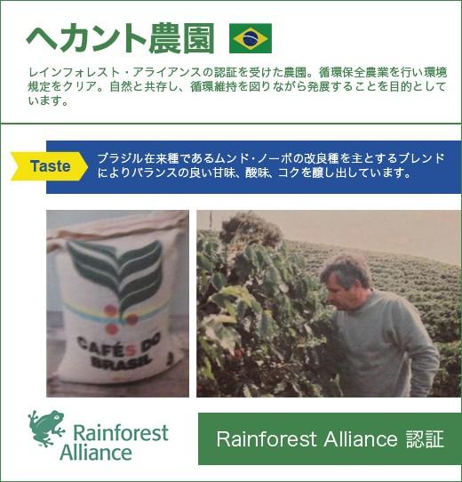 【コーヒー】ヘカント農園 【煎り豆】 200g
