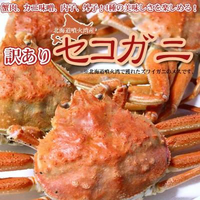 セイコガニ 活 北海道産 香箱ガニ せいこ蟹 セコ...