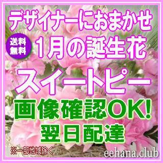 1月誕生花★デザイナーにおまかせフラワー3,500円...